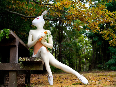 Rubber Bunny in the Forrest