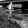 Denver Street Photography: Walking the Cherry Creek