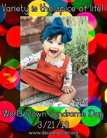 WDSD Posters