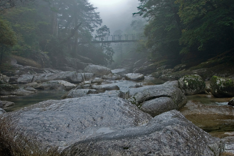 Shot of a suspension bridge in the background of a calm creek in Yakushima