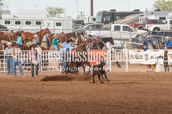 REGION-1 CALF ROPING