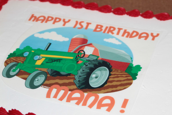 Mana's 1st Birthday (Candids)