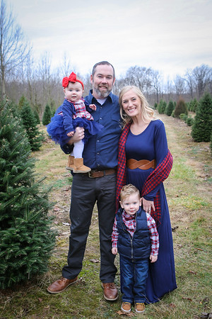 Zapf Tree Farm Photos!