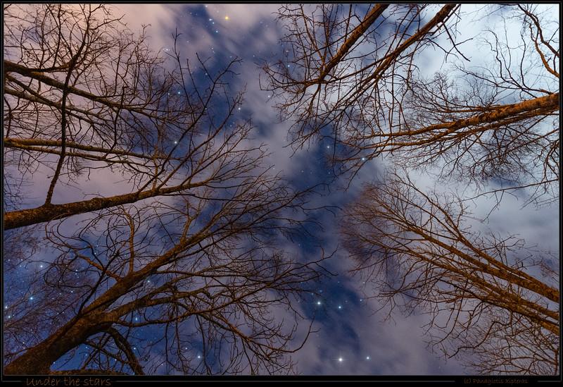 Under the stars - (c) Panagiotis Xipteras.jpg