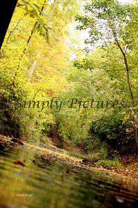 Lanana Creek020