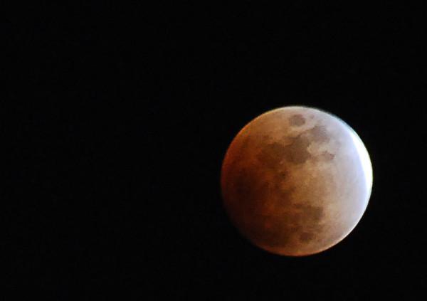 0222 moonlight.jpg