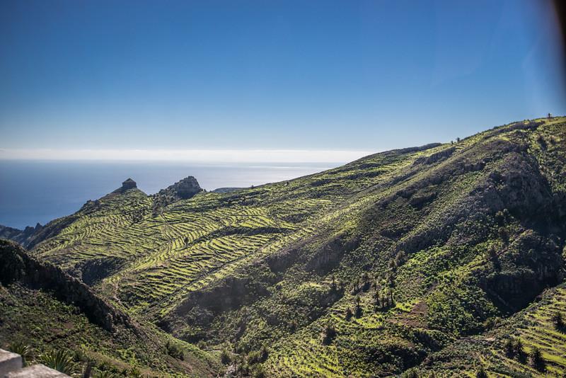 Canary Island-13.jpg