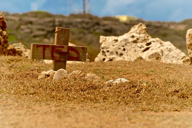 Aruba2013 (96).jpg