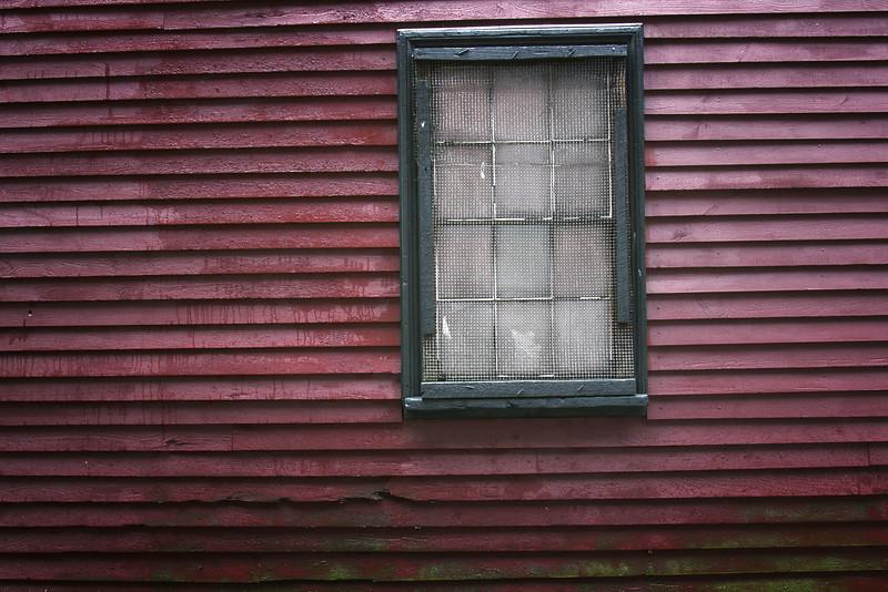 Sandra_Wescott_Window.jpg