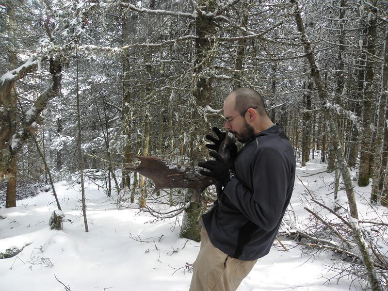 Brian the moose sax player.JPG