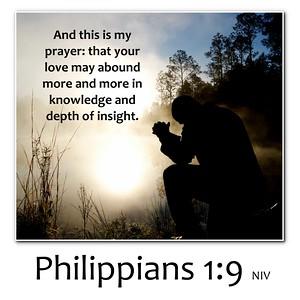 Philippians Verse Memes