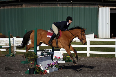 York College Equestrian Competition