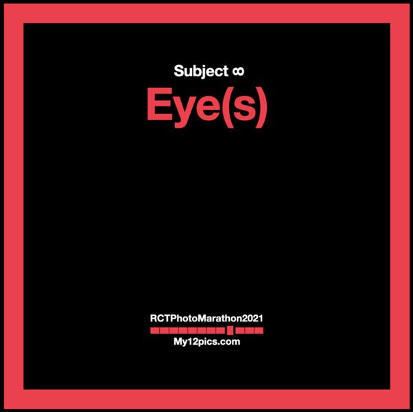 8) Eye(s)