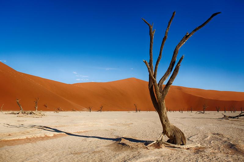 Namibia Baby-129.jpg