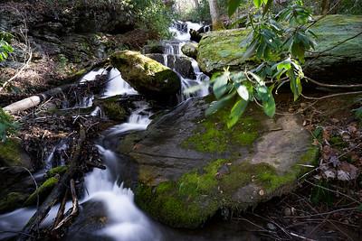 Suches Creek