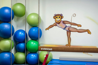 MONKEYS GYM