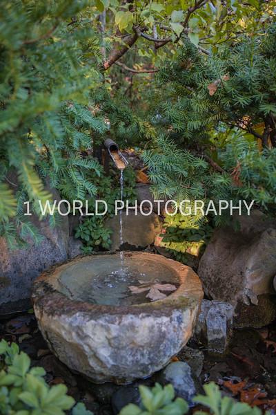 Anderson Japanese Gardens25025.jpg