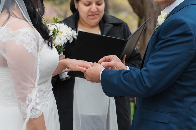 Central Park Wedding - Diana & Allen (117).jpg