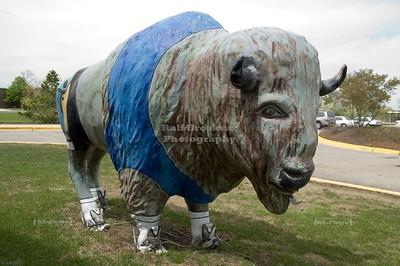 USA - Buffalo Grove