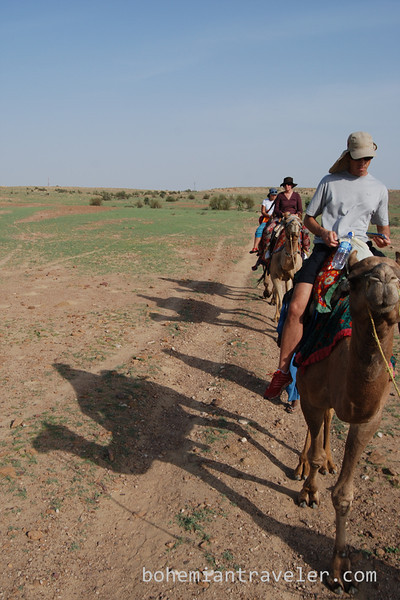 rajasthan camel train and shadows.jpg