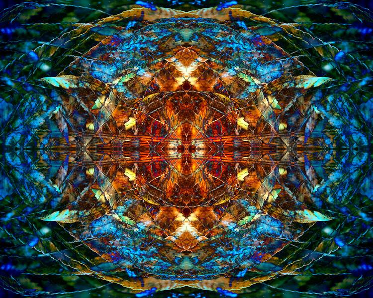 20210103-JAN_8614-mirror-1-7.jpg
