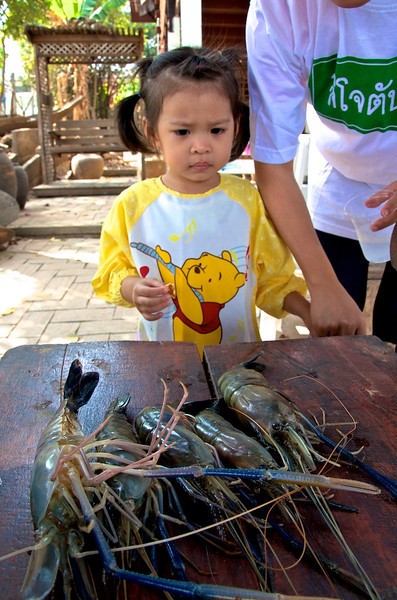 PF getting a quick lesson on how to fish for river prawns.jpg