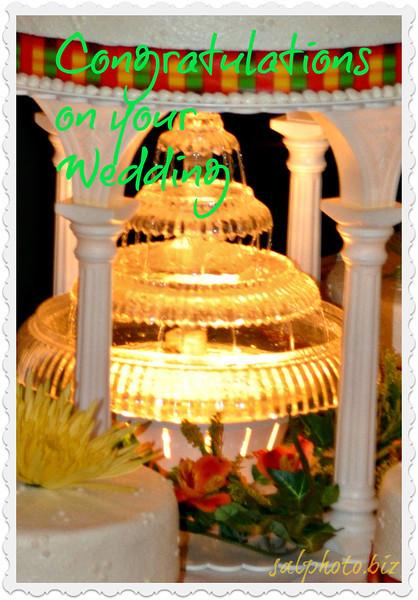 from http://salphotobiz.smugmug.com/Weddings/ShalonKates/18007735_kbppD9#!i=1384553835&k=Tf5ZCdP