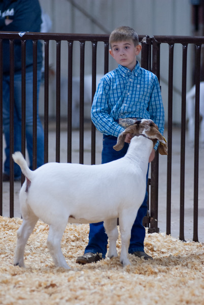 kay_county_showdown_goats_20191207-106.jpg