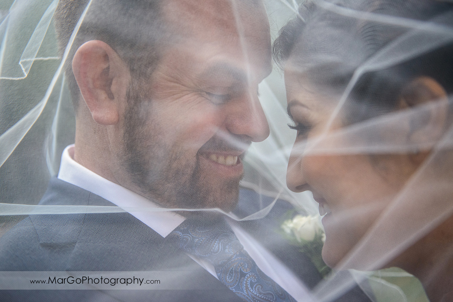 portrait of bride and groom under veil at Saratoga Springs Cathedral Grove
