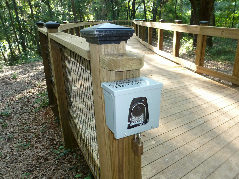 8 July 2014: Trail camera on the south end of the walkway.