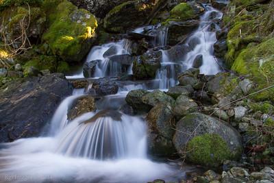 Carbon River 20131124