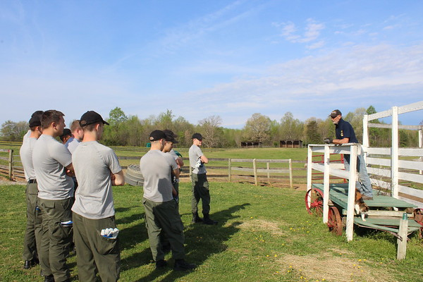 Applied Christianity class takes service trip to White Bird Appaloosa Horse Rescue