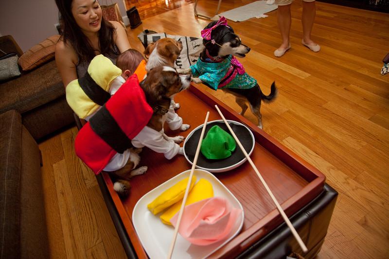Dog-sushi-halloween-68.jpg