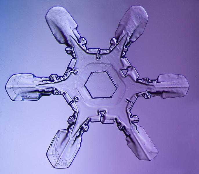 snowflake-5553-Edit.jpg