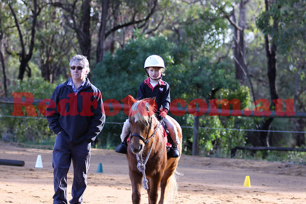 2011 07 03 Darlington Pony Club Rally