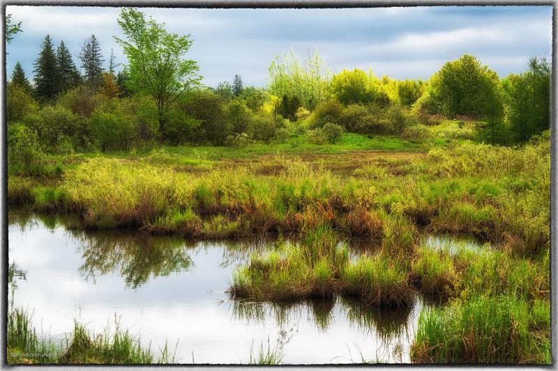 Along Cross Canada Trail in Stittsville Ontario