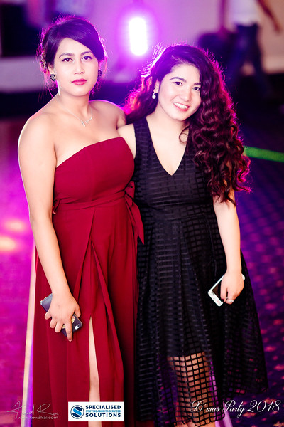 Specialised Solutions Xmas Party 2018 - Web (107 of 315)_final.jpg