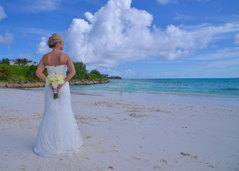 pitt wedding-80.jpg