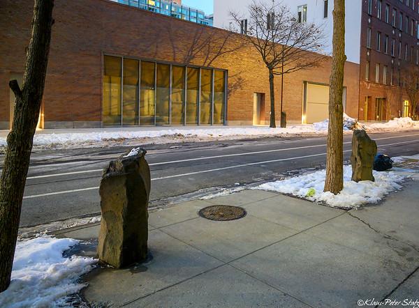 2021 Joseph Beuys - 7000 Oaks