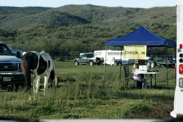 ACTHA Bumble Bee Ranch 4-10-10