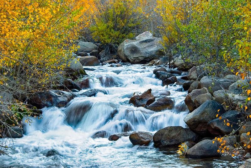 Bishop Creek-7.jpg