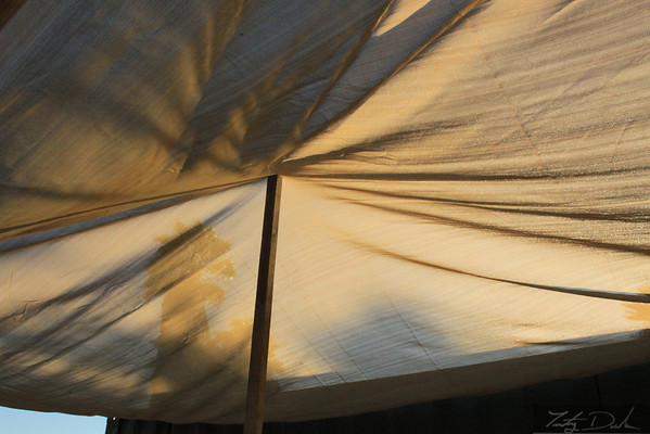 Shade Structure & Work Benches