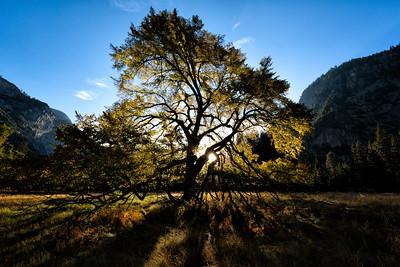 20141020 Yosemite