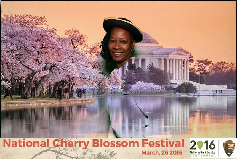 Boothie-NPS-CherryBlossom- (449).jpg
