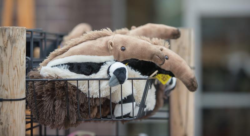 2018  Detroit Zoo BunnyVille-1.jpg