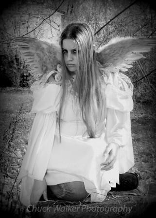 2013-1115 (Angel)