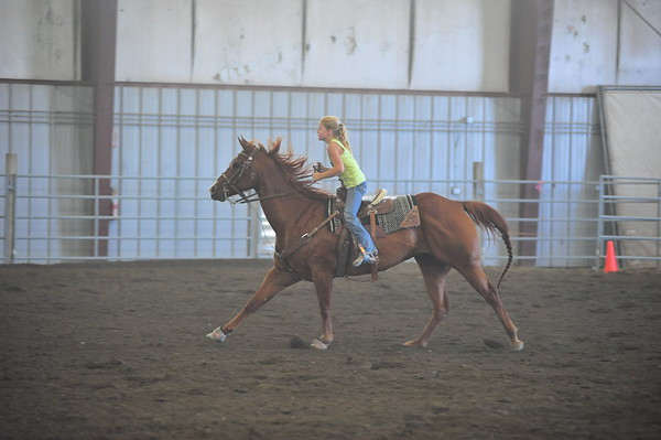 CBBRC Horse