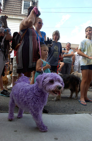 Ambler Dog Days of Summer Parade