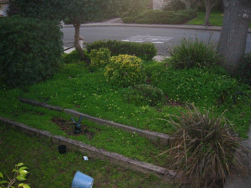 23Jan2005-09_17_05.jpg