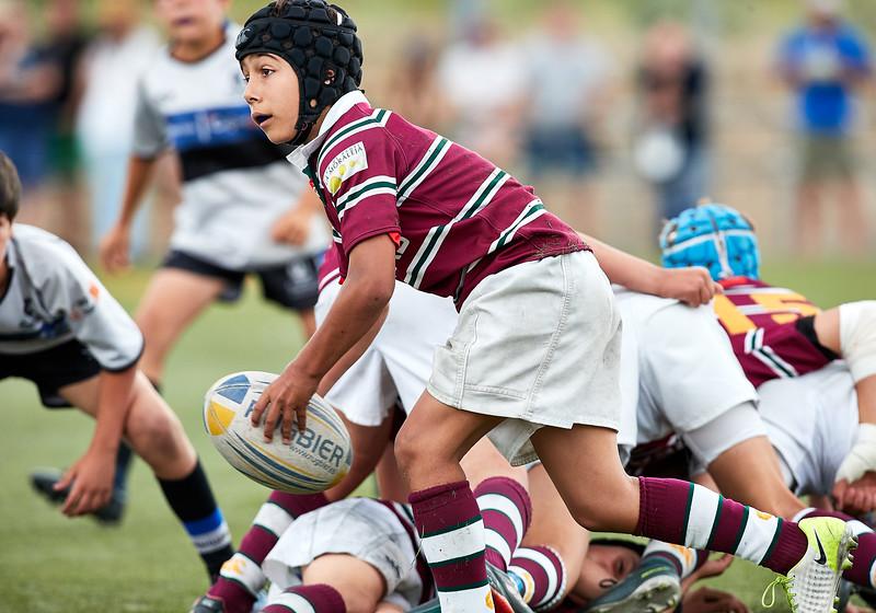 (Sub12 - 1/4 Oro) Alcobendas Rugby A vs Cajasol Ciencias A: 5-10